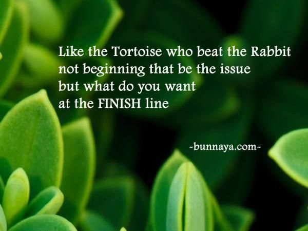 """""""like the tortoise that beat the rabbit not beginning that be the issue but what do you want at the finish line"""" - Positive Quote -"""