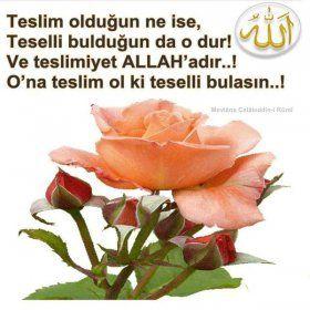 Resimli Dini İslami Mesajlar Sözler