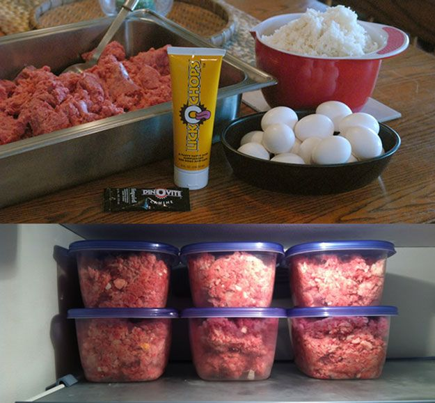 raw ground beef, eggs & white rice, see more at http://homemaderecipes.com/specialty/pets/10-homemade-dog-food-recipes/