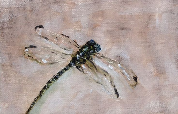 """Dragonfly #378"" daily painting by Heidi Shedlock. Visit the blog and follow links to the online store"