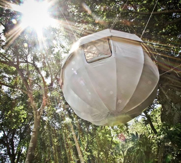 | hanging tree house |