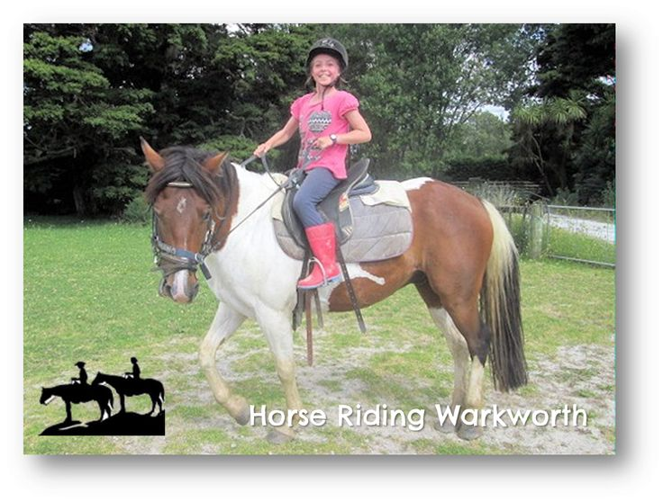 Horse Riding Warkworth great family school holiday fun  #schoolholidays #schoolholidayfun #linku2schoolholidays #schoolholidayprogrammes #northshore #northshoreschoolholidays #aucklandschoolholidays #newzealandschoolholidays #nzschoolholidays #northshore #auckland #newzealandthingstodo #nzschoolholidays #whatson #kids #holidays #kidfriendly #activekids #holidayactivity #holidayfun #christmasholidays #summerfun #northshoresummerfun #aucklandsummerfun #schoolholidaysummerfun