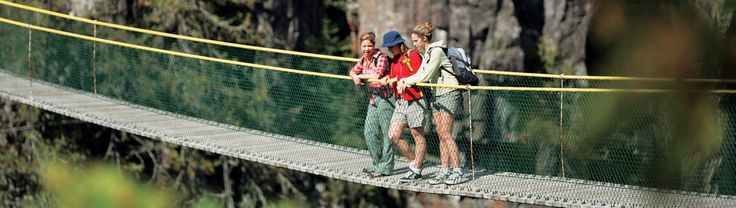 For all adventurous people, London, Ontario is the perfect destination this summer. Visiting Boler Mountain Treetop Adventure Park is one of numerous things to do in London Ontario. Have fun and enjoy delicious barbecue and well-earned beverage for your bravery. There are numerous things to do in London Ontario. Visit museums and various cultural attractions or spend your time engaging in various activities offered by East Park. Regarding more details visit http://summerfunguide.ca