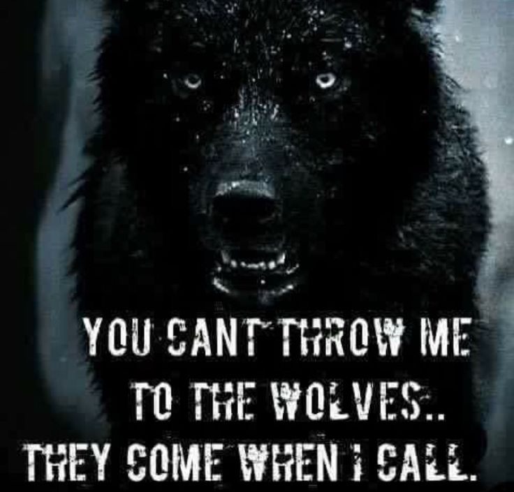 You can't throw me to the wolves, they come when I call...