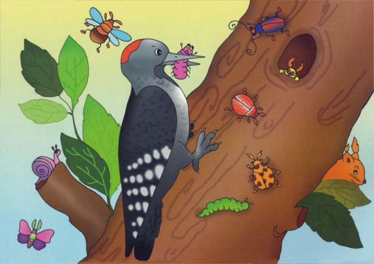 Подборка игр и упражнений на тему «Птицы»