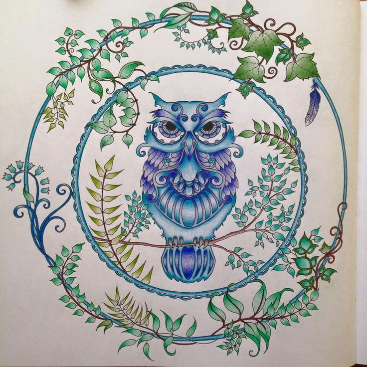 enchanted forest coloring pages owl - photo#25