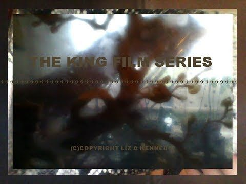 The KING Film Series by liz a kennedy.