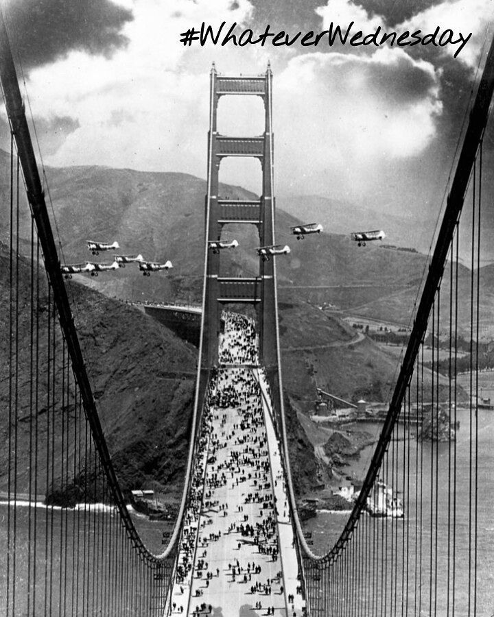 Hey guys!! Here's a fun fact to for you all mid-week!  Did you know the Golden Gate Bridge was the first construction project ever that used the rotating drum mixer that concrete trucks use  today??  Additionally as a contractor if you register BEFORE June 30th.. enjoy our unlimited membership FREE until September 1st!! #projekts #gettingthingsdone #whateverwednesday #humpday  #construction  #Calgary #yyc #homeowner #contractor #free #newbusiness  #launch #entrepreneur