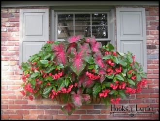 Flower Box...Love the red!