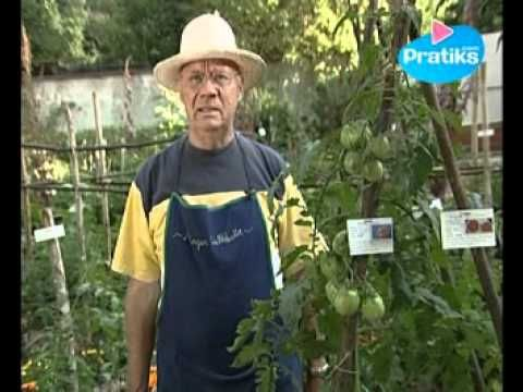 12 best images about jardin potager on pinterest how to recycle videos and - Comment organiser son jardin potager ...