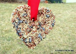 Can't forget about our feathered friends on Valentine's Day