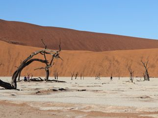Our Recent Travels - Namibia: deadvlei