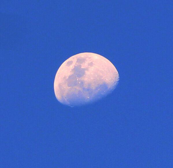 Luna en el cielo azul, romántico, fotografía