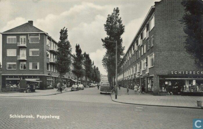 Rotterdam Schiebroek - Peppelweg, gezien vanaf de Kastanjesingel richting Rododendronplein