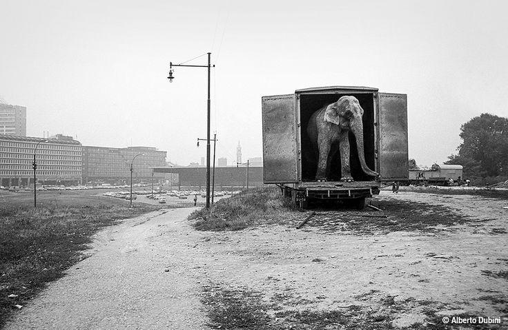 Circo Moira Orfei, area Porta Nuova-Garibaldi Milano, 1980 fotografia di Alberto Dubini