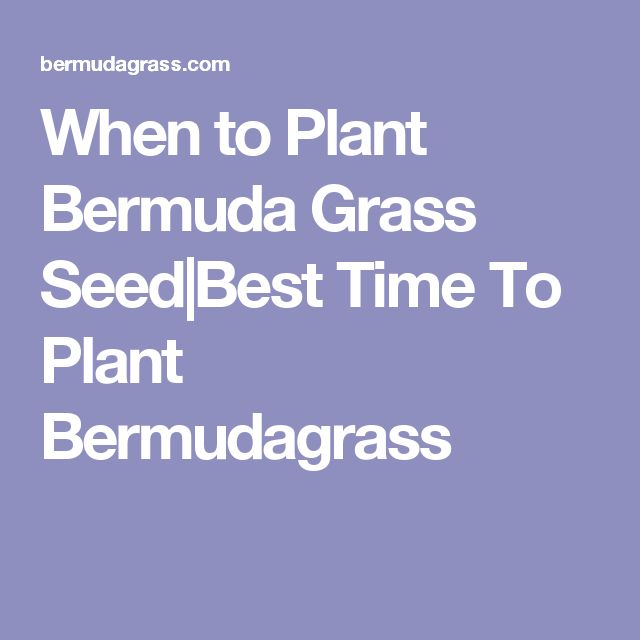 When to Plant Bermuda Grass Seed Best Time To Plant Bermudagrass