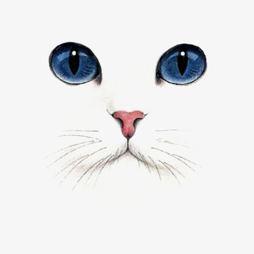 Hand Painted Animal Face Png Free Download Blue Eyes Kitty Png Cartoon Png Transparent Clipart Image And Psd File For Free Download Cat Painting Cat Art Cat Drawing