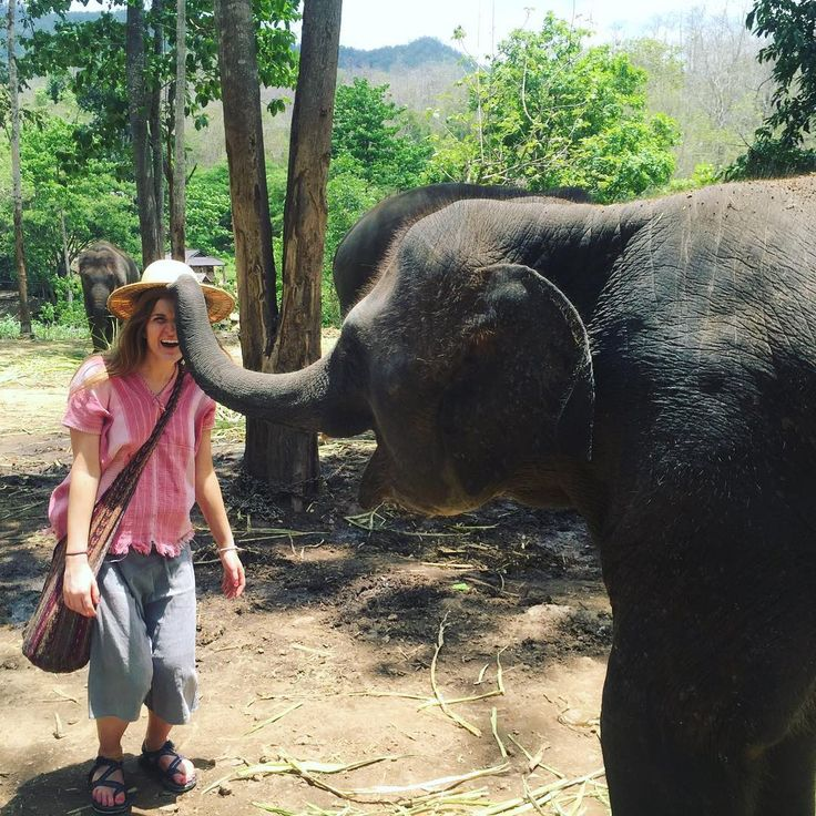 "Chiang Mai, Thailand @kelsnow44 - ""Great times with the giant  #Backpackerstory #backpacker #travel #destination"