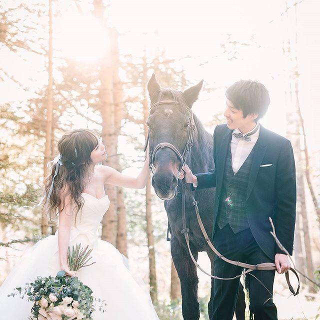 #馬 と #秋 の #軽井沢 を行く。 . #prewedding session in #karuizawa with #horse . . Produced by @land_wedding Photography by #yuyamabe . #weddingphotography #weddingphotographer #前撮り #結婚式準備 #プレ花嫁 #ロケーションフォト #ドレス選び #ウェディングフォト #写真撮ってる人と繋がりたい #写真好きな人と繋がりたい #ファインダー越しの私の世界 #軽井沢ウェディング #軽井沢前撮り