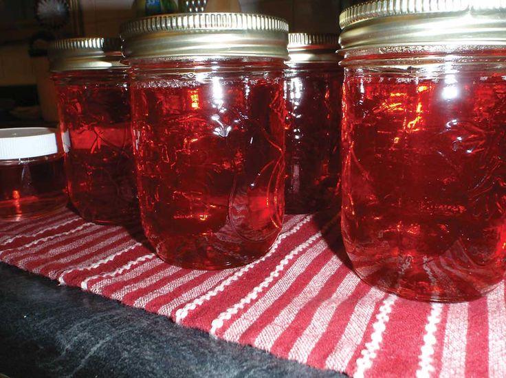 Delicious Wild Rose Jelly Recipe