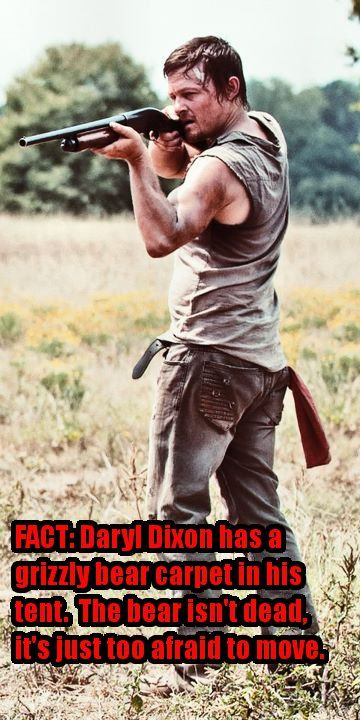 Daryl grizzly  [ The Walking Dead ]