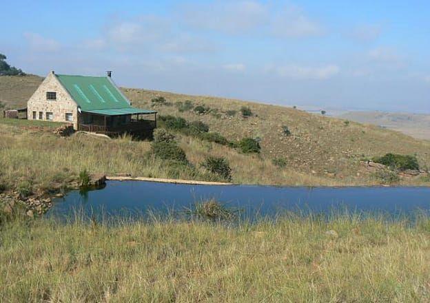Longview Ranch