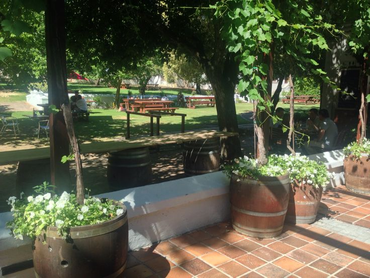 Tranquil dining at the estate