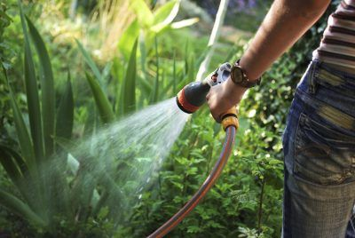 It can be a challenge keeping both your garden plants and lawn looking their best. This can be especially difficult if you live in a region where water is scarce or heat is a factor. So how do you maintain a healthy landscape in such extremes? Read on for some great water-saving tips.