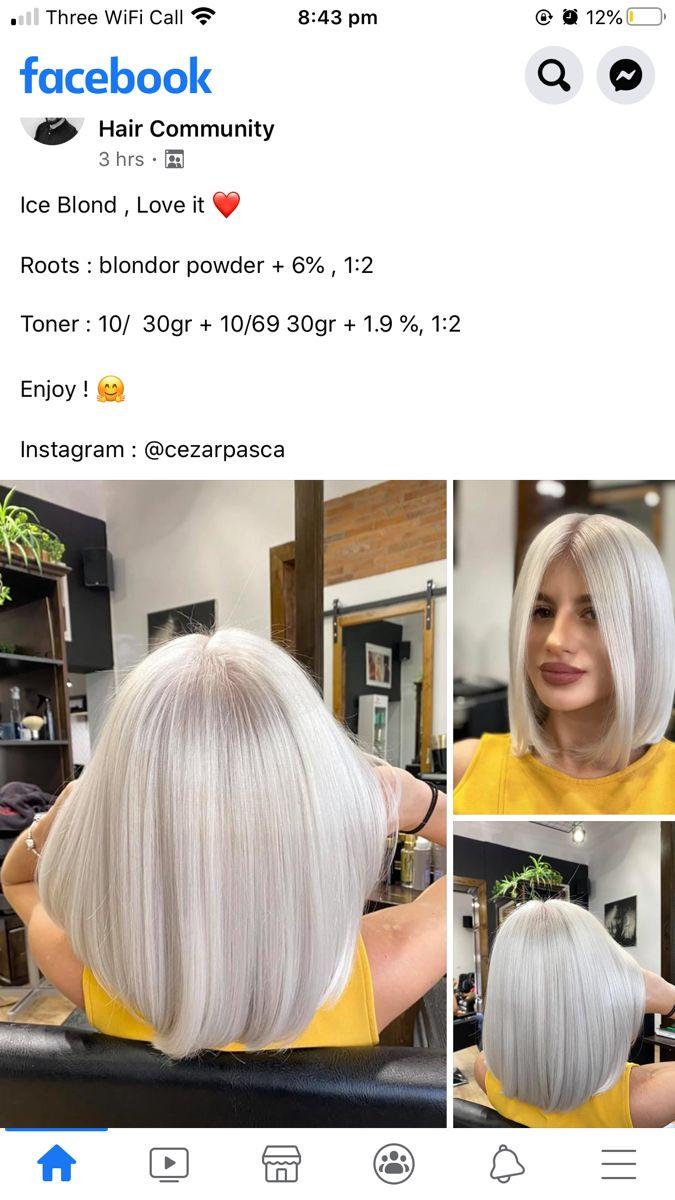 Pin By Paula Craiu On Blond Platinat Gri Hair Color Formulas Hair Color Techniques Blonde Hair Color