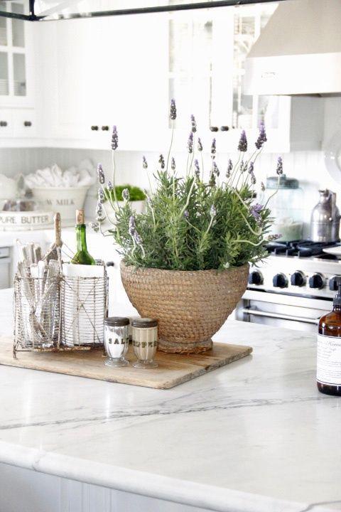 Kitchen white countertops white cabinets natural color palette
