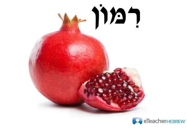 Pomegranate pronunciation: Rimon