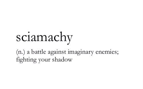 Sciamachy (n) ..a battle against imaginary enemies; fighting your shadow