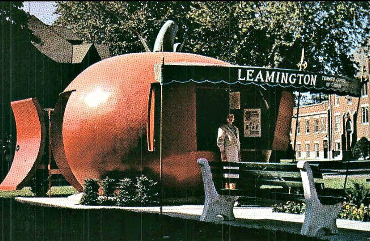 Historic postcard from Leamington, Ontario. The Tomato Capital of Canada