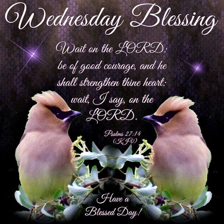 Wednesday Blessing, Psalms 27:14- Have a Blessed Day!!