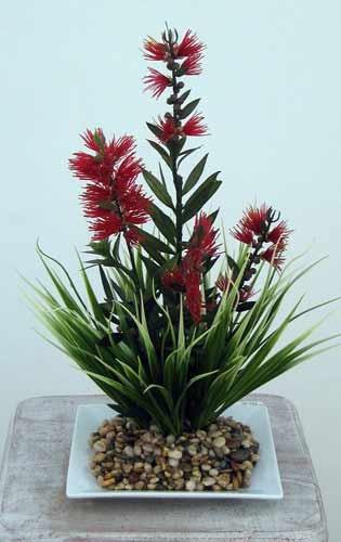 Bottle brush flower arrangement