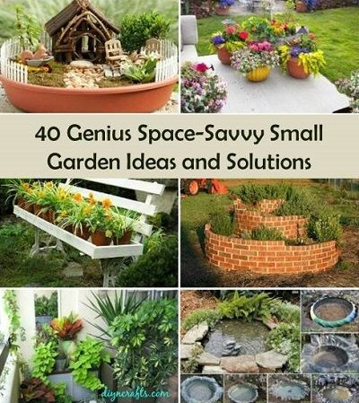 Recipes projects more 40 genius space savvy small Savvy home and garden