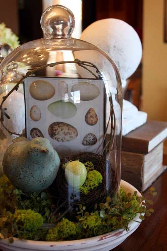 I would never put a birds nest in there - but i like the eclectic feel of having multiple pretty items in the cloche