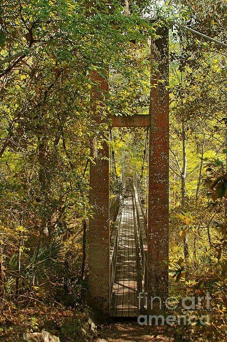 Ravine Gardens State Park Palatka, Fl.