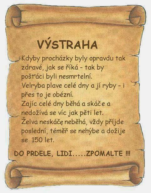 Brněnská výstraha