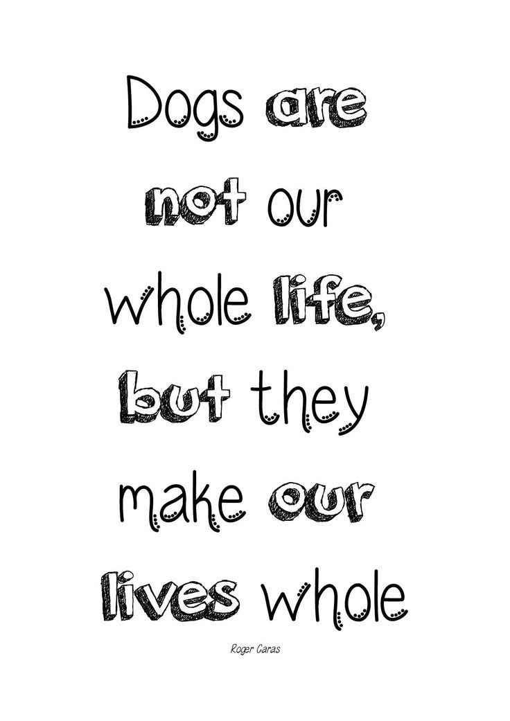 Dogs are not our whole life, but they make our lives whole (Roger Caras). Typo-Poster von @canistecture