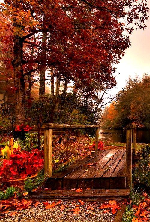 fresh autumn morning …via pinterest