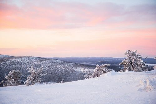 Planning a trip to Finland but undecided on the month to travel? Here are the 12 months of Finland in a nutshell for you, just take your pick!