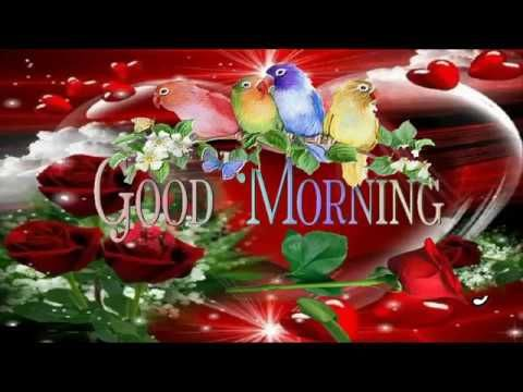 GOOD MORNING Wishes Video - Whatsapp/Ecard/Images/Greetings/Lovely & Beautiful Video - YouTube
