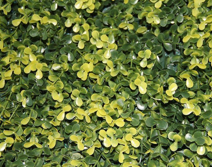 Muros Verdes Artificiales | Te Quiero Verde Mx | Muros Verdes | Follaje Sintetico