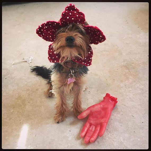 The Demogorgon Dog Hat Demodog From Stranger Things Uk