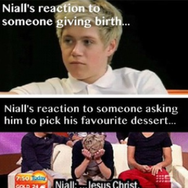 Hhaahaahhahhahaha I love him.: Direction Infection, James Horan, Funny, Niall James, Niall Horan, One Direction, Niallhoran, Direction 3