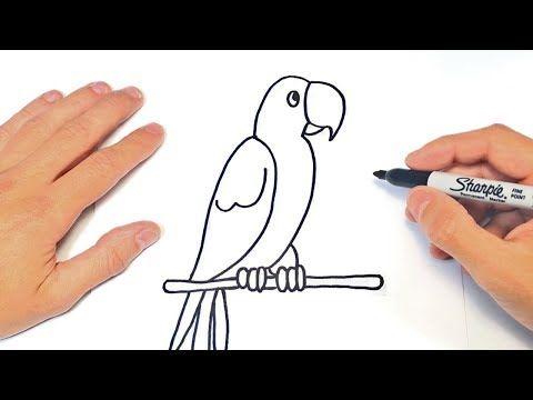 Como Dibujar Un Loro Facil Para Niños Google Search Dibujos A Lapiz Faciles Decoraciones Para Marcar Cuadernos Dibujos Romanticos A Lapiz