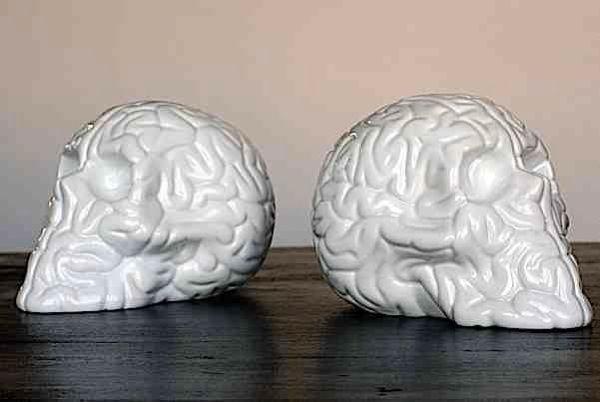 Skull-brains