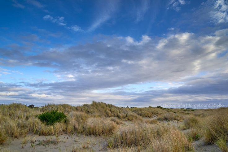 https://flic.kr/p/Az23An | Paisaje patagonico - Maullin (Patagonia - Chile) | Maullin se ubica a 57 kilómetros al este de Puerto Montt, en la Provincia de Llanquihue, Region de los Lagos. Este pequeño poblado situado a orillas del Río homónimo, posee atractivos naturales como la playa Pangal, Puerto Godoy, Quillagua y los Humedales del Rio Maullin.  Pangal es la playa principal y queda al suroeste de Maullin entre las desembocaduras de los ríos San Pedro Amortajado y Río Maullin. De…