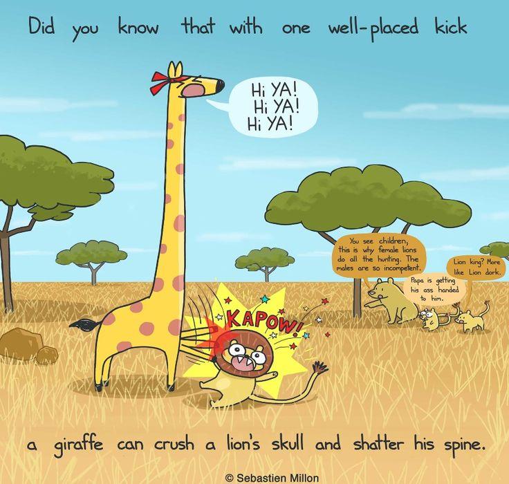 Giraffe Karate Chop - Sebastien Millon / Art & Illustration